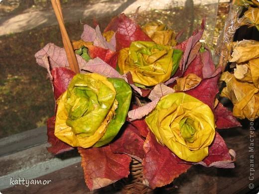 Вырастили с дочкой розы... фото 1