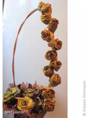 Вырастили с дочкой розы... фото 4