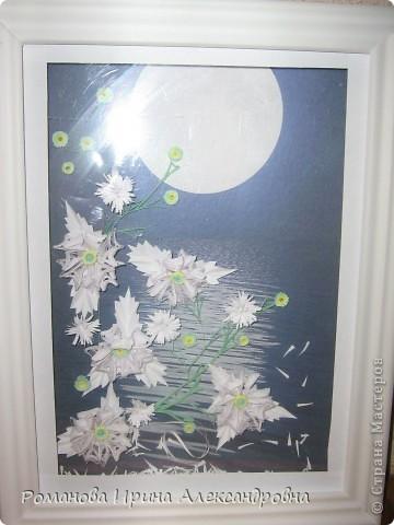 Лунная ночь фото 1