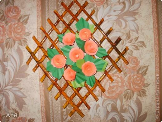 Мои первые цветы из бахромы. фото 4