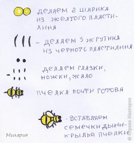 """Пластилиновая открытка: """"Села пчелка на варенье..."""" фото 3"""