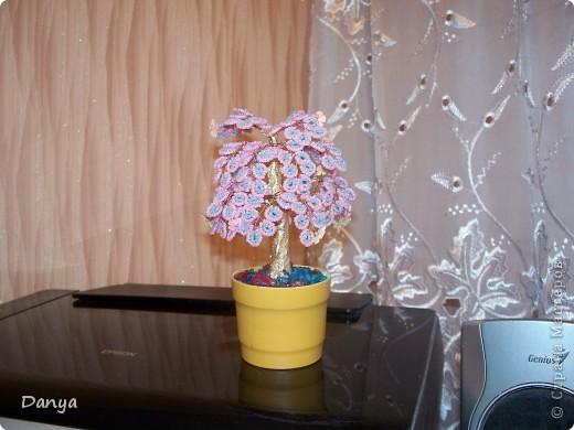 осеннее дерево фото 2