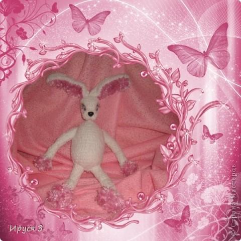 Зайка Алиса фото 14
