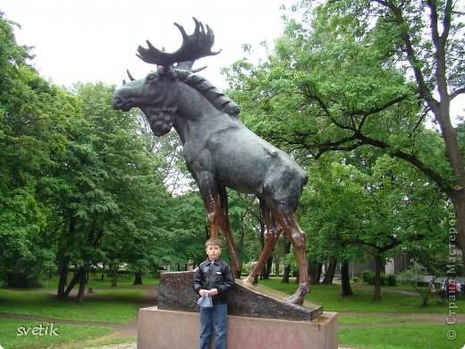 О Выборгском замке я рассказывала в первой части http://stranamasterov.ru/node/105386, а теперь хотелось бы показать Вам  город.  Памятник основателю Выборга Торгильсу Кнутссону. фото 28
