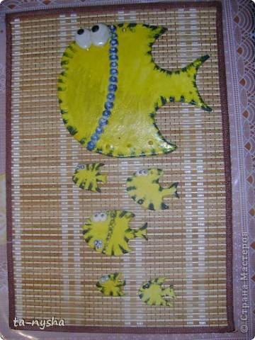 Рыбы-желтопузики и желторотики :)) фото 2