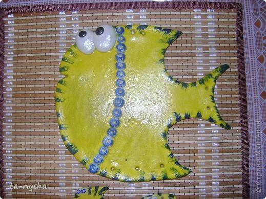 Рыбы-желтопузики и желторотики :)) фото 3