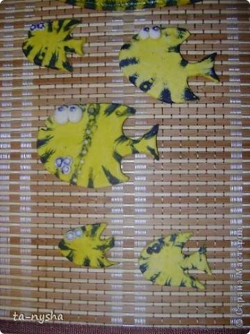 Рыбы-желтопузики и желторотики :)) фото 4