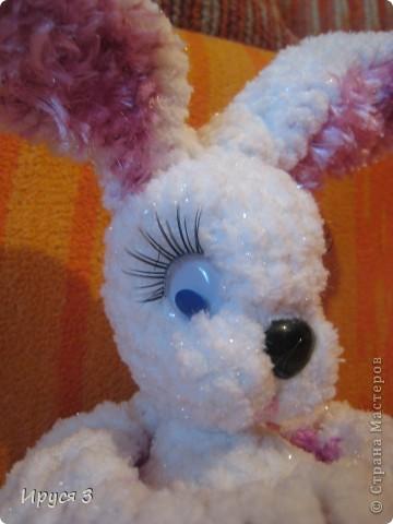 Зайка Алиса фото 9