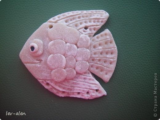 Это рыбка слеплена и раскрашена моей дочкой. Название тоже ее. фото 3