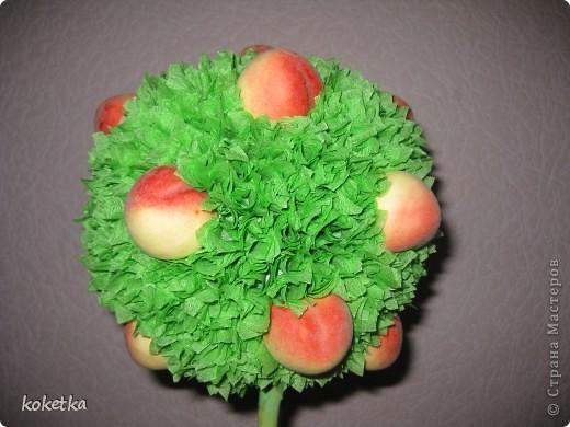 Персиковое деревце  фото 2
