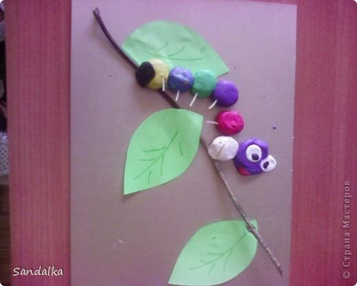 Еще гусенички фото 3