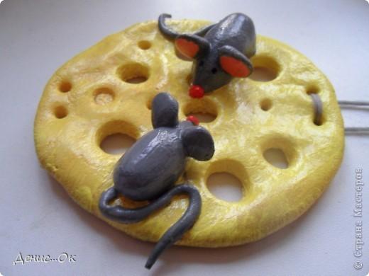 Мышки на сыре фото 3