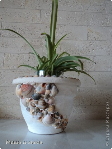 Тарелочка.Делается очень просто: мы взяли блюдце из-под цветочного горшка, покрасили его белой акриловой краской (естественно после грунта). Ракушки приклеили на обычную шпаклевку :) Присыпали песочком, готово! фото 3