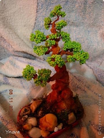 Насмотрелась на красоту бисерных деревьев,  и рискнула. Мне очень понравился и процесс, и результат. фото 2