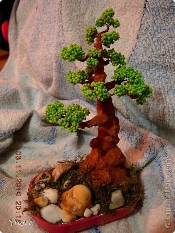 Насмотрелась на красоту бисерных деревьев,  и рискнула. Мне очень понравился и процесс, и результат. фото 1