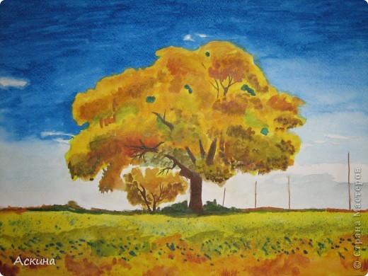 Очень люблю рисовать. Поэтому даже купила самоучитель и теперь рисую по нему. Одинокое дерево. фото 1