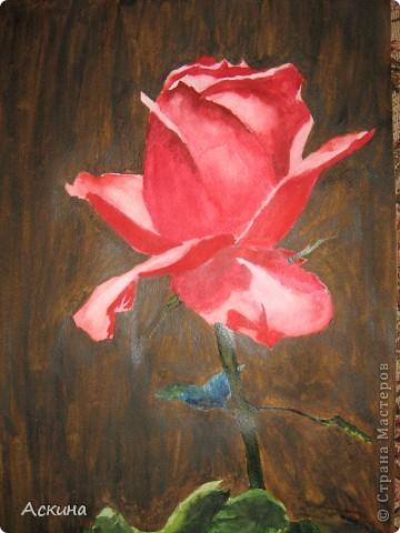 Очень люблю рисовать. Поэтому даже купила самоучитель и теперь рисую по нему. Одинокое дерево. фото 6