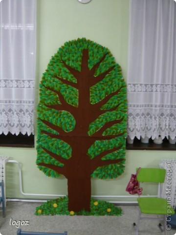 Поделка изделие Аппликация Генеалогическое древо Бумага гофрированная фото 1