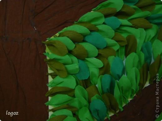 Поделка изделие Аппликация Генеалогическое древо Бумага гофрированная фото 2