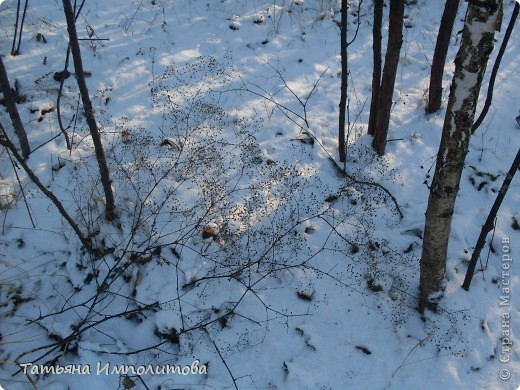 Снег на Урале фото 4