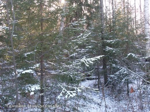 Снег на Урале фото 8