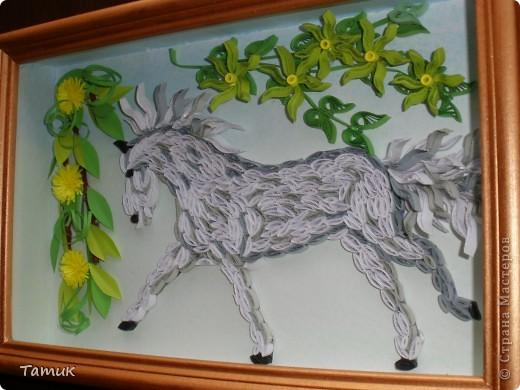 Лошадка фото 2