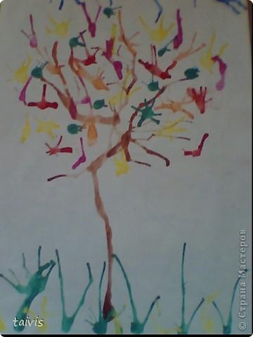 Осеннее дерево. фото 1