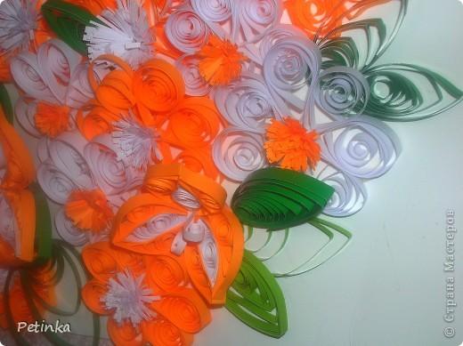Мои любимые оранжевые цветочки фото 3