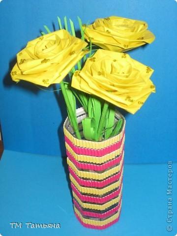 жёлтые  розы фото 1