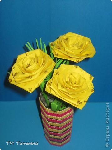 жёлтые  розы фото 2