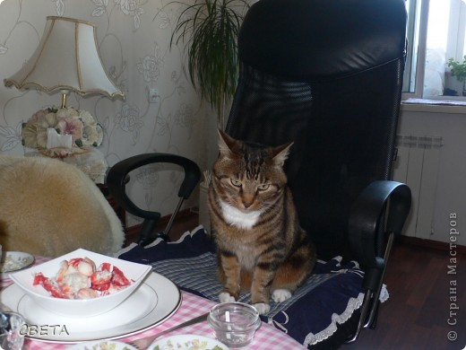 Преводитель дворянства - Симба. фото 1
