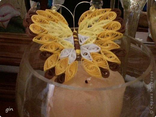 бабочка.одна из... фото 1