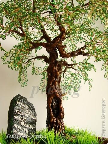 Могучий дуб ( 45 см )   фото 2
