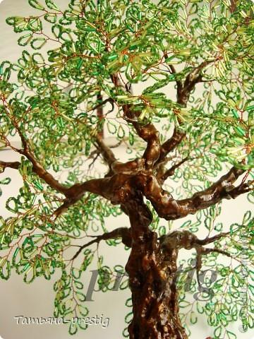 Могучий дуб ( 45 см )   фото 3