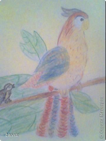 Некоторые рисунки из альбома. фото 10