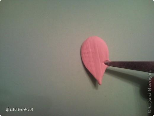 Мастер-класс Лепка Мак МК Пластика фото 15