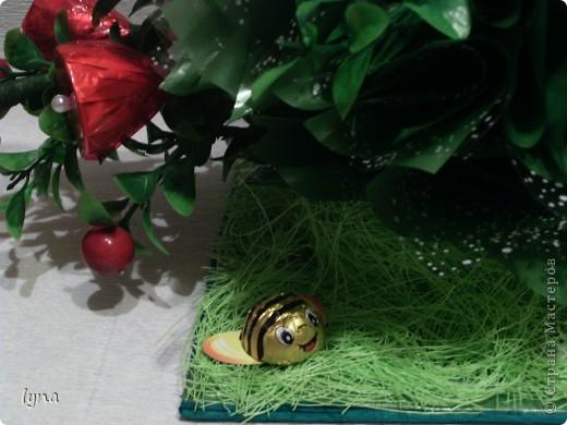 Ягодный кустик фото 7