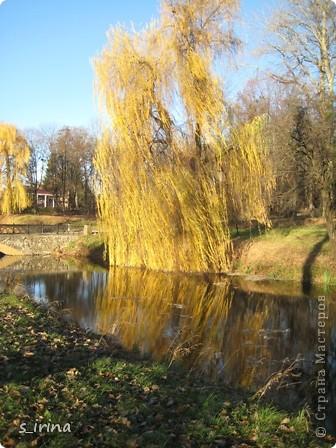 Дендропарк «Александрия» – самый большой в Украине. Он расположен на склоне реки Рось и занимает площадь в 200 га. На его территории растет больше 600 видов деревьев и кустарников и более 700 разновидностей травянистых растений. В общем, в парке растет 1360 видов, разновидностей, сортов и форм растений. При строительстве парка был грамотно обыгран рельеф – три глубокие, параллельные склону реки, балки, расширяющиеся к берегам.  фото 11