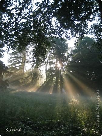 Дендропарк «Александрия» – самый большой в Украине. Он расположен на склоне реки Рось и занимает площадь в 200 га. На его территории растет больше 600 видов деревьев и кустарников и более 700 разновидностей травянистых растений. В общем, в парке растет 1360 видов, разновидностей, сортов и форм растений. При строительстве парка был грамотно обыгран рельеф – три глубокие, параллельные склону реки, балки, расширяющиеся к берегам.  фото 13