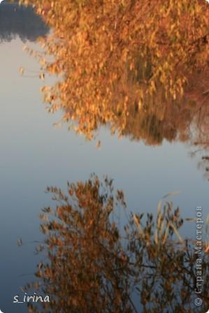 Дендропарк «Александрия» – самый большой в Украине. Он расположен на склоне реки Рось и занимает площадь в 200 га. На его территории растет больше 600 видов деревьев и кустарников и более 700 разновидностей травянистых растений. В общем, в парке растет 1360 видов, разновидностей, сортов и форм растений. При строительстве парка был грамотно обыгран рельеф – три глубокие, параллельные склону реки, балки, расширяющиеся к берегам.  фото 26