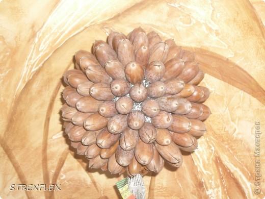 Это дерево было сделано просто так. Были в лесу и насобирали мешок отборных желудей. И вот тогда придумалось это дерево. фото 3