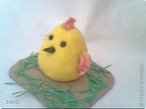 Соленые цыплятки. фото 3