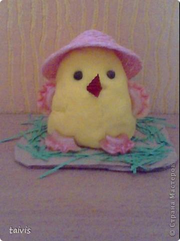 Соленые цыплятки. фото 4