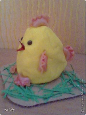 Соленые цыплятки. фото 5