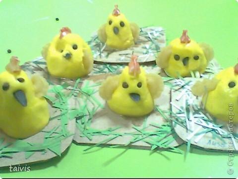 Соленые цыплятки. фото 10