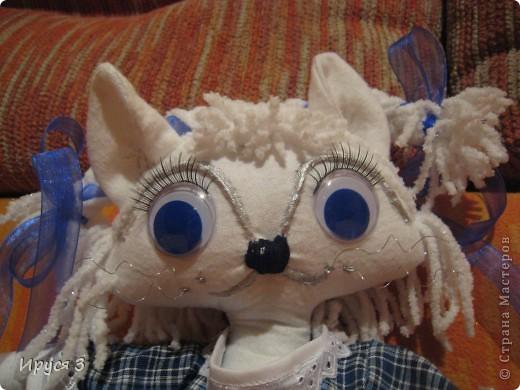 Кошечка Василиса фото 2