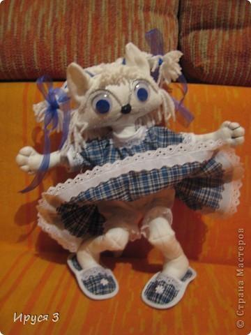 Кошечка Василиса фото 4