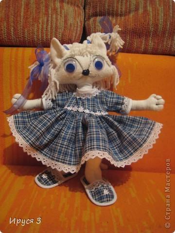Кошечка Василиса фото 5