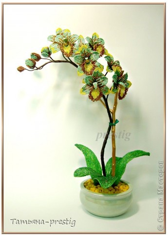 Бисероплетение - Орхидея Фаленопсис h44см из бисера.