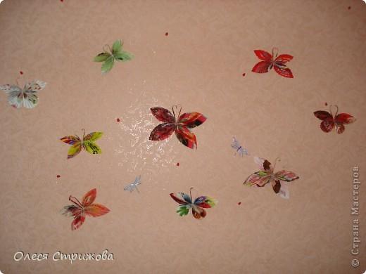 Бабочка ! фото 3